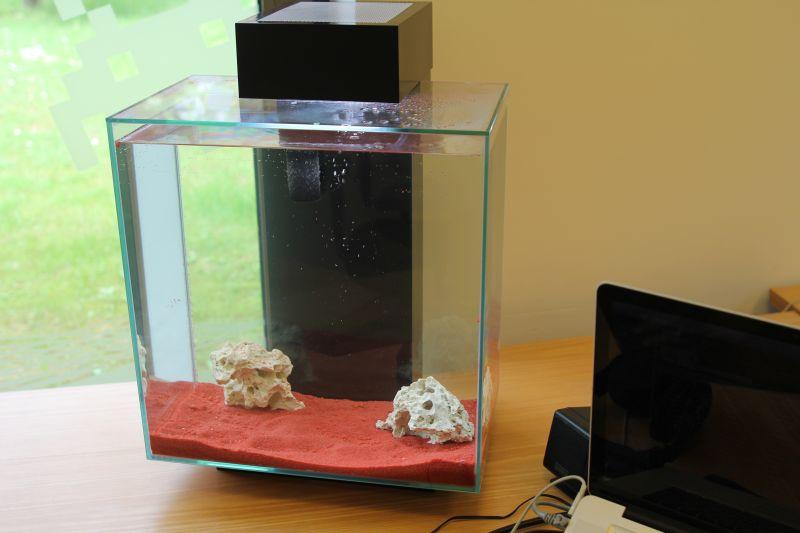 der chef hat ein neues aquarium. Black Bedroom Furniture Sets. Home Design Ideas